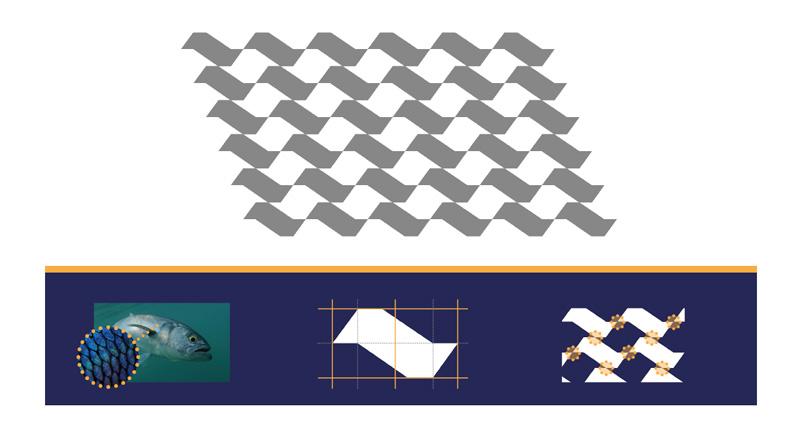 Cálculo 50 aniversario – Pablo Cueva Yunyas portfolio